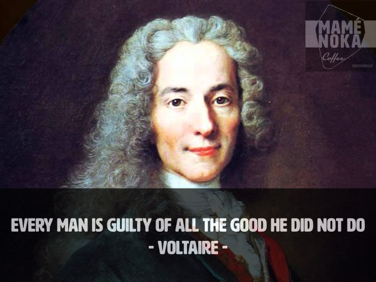 voltaire-every-man-is-guilty-of-the-good-he-did-not-do